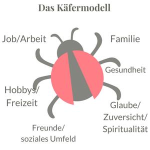Käfermodell: Wie sieht dein Leben aus?